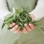 Домашние рецепты лосьонов из лечебных трав