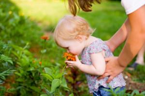 Как сделать сад безопасным для ребенка