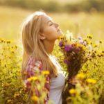 Травы для успокоения и сна