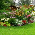Многолетние цветы цветущие все лето фото и названия